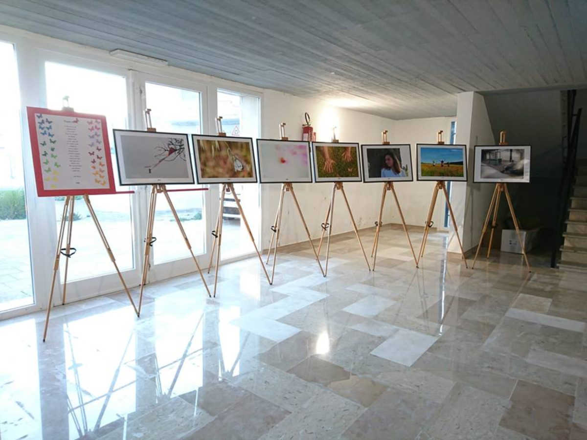 Farfalle Libere in mostra a Donne Insieme